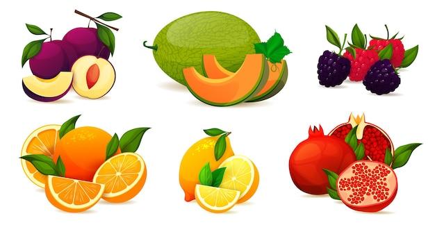 Collection d'ensemble de vecteurs de vitamines de fruits d'été