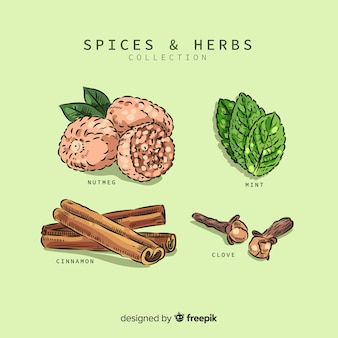 Collection d'épices et d'herbes