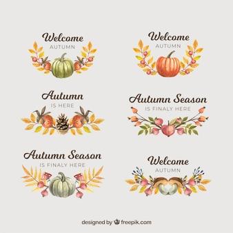Collection d'étiquettes automne avec des citrouilles