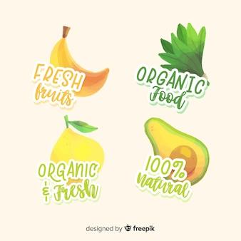 Collection d'étiquettes de fruits biologiques dessinés à la main