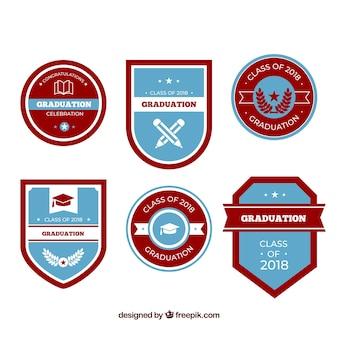 Collection d'étiquettes de graduation de pack avec un design plat