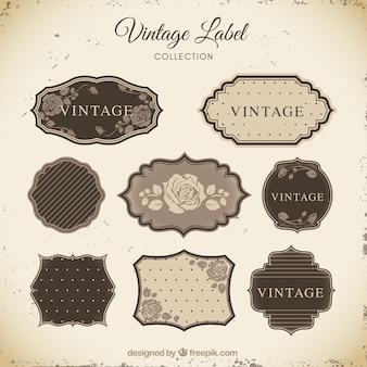 Collection d'étiquettes avec style vintage