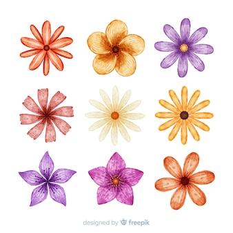 Collection de feuilles et d'aquarelles colorées