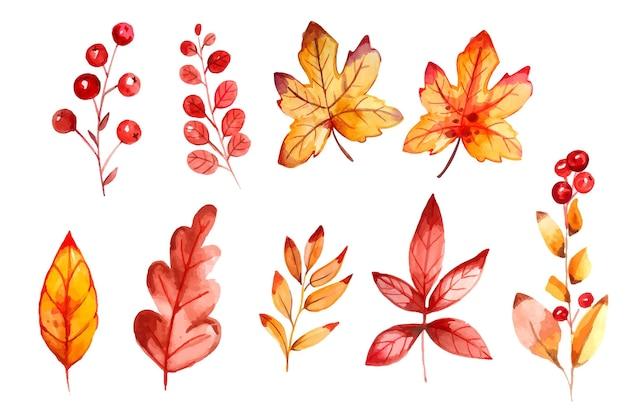Collection de feuilles d'automne aquarelle