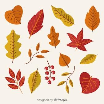Collection de feuilles d'automne design dessiné à la main