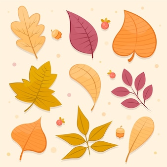 Collection de feuilles d'automne design plat