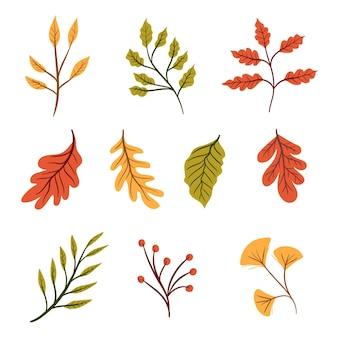 Collection de feuilles d'automne dessinée