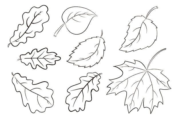 Collection de feuilles d'automne. ensemble d'illustrations de feuillage forestier. feuille de chêne, d'érable et de noisetier. éléments décoratifs d'automne pour la conception et la décoration d'impression, d'autocollant, d'invitation et de carte de voeux. vecteur premium