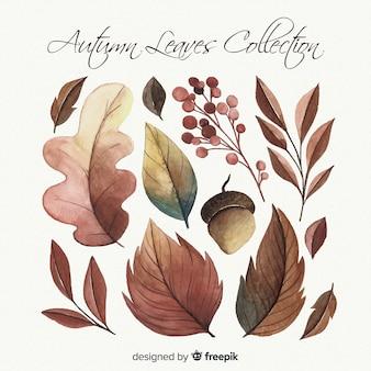 Collection de feuilles d'automne de style aquarelle