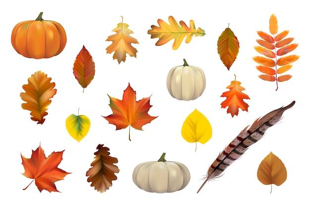 Collection de feuilles d'automne vector