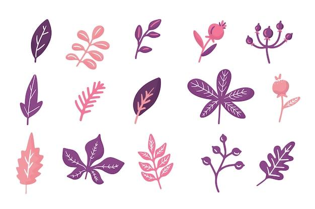 Collection de feuilles d'automne