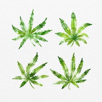 Collection de feuilles de cannabis aquarelle