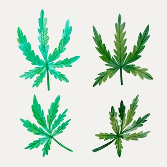 Collection de feuilles de cannabis aquarelle