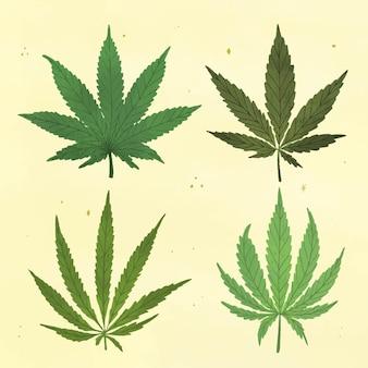 Collection de feuilles de cannabis botaniques dessinées