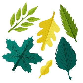 Collection de feuilles de design plat