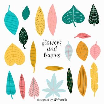 Collection de feuilles dessinées à la main