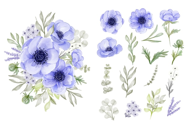 Collection de feuilles de fleurs anémone violette élégante isolée