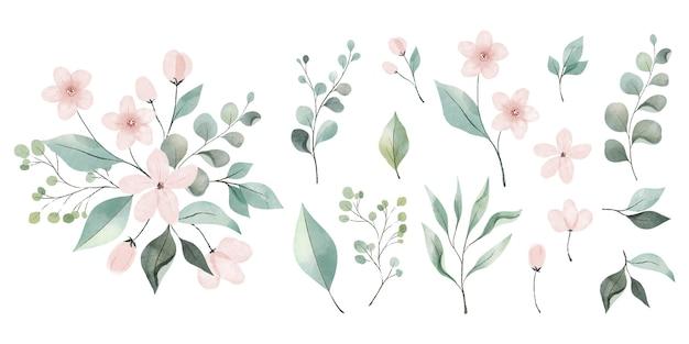 Collection de feuilles et de fleurs aquarelles