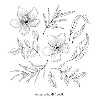 Collection de feuilles et de fleurs artistiques dessinées à la main