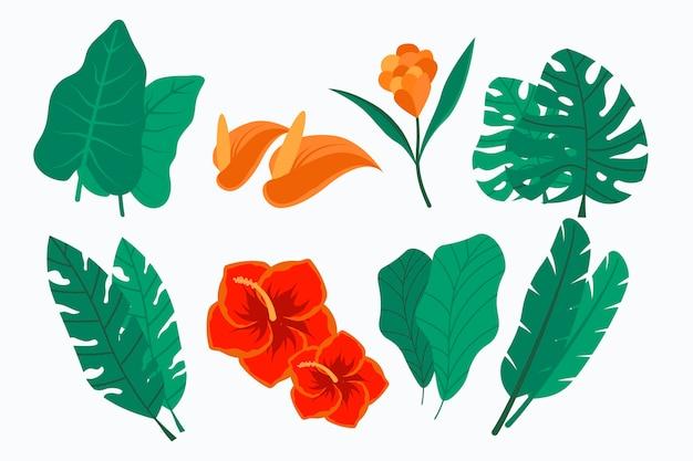 Collection de feuilles et de fleurs tropicales