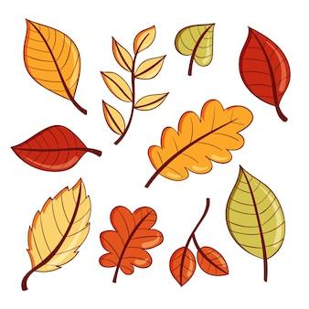 Collection de feuilles de forêt dessinées à la main