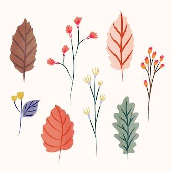 Collection de feuilles de forêt plate
