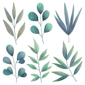 Collection de feuilles vertes aquarelle