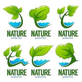 Collection de feuilles vertes décoratives