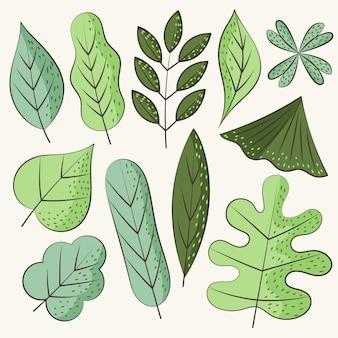 Collection de feuilles vertes dessinées à la main