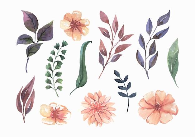 Collection de feuilles vertes de fleurs aquarelle.