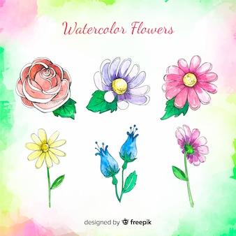 Collection de fleurs à l'aquarelle
