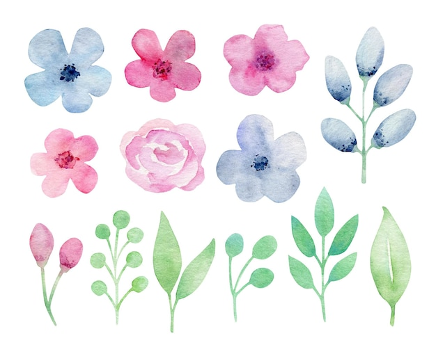 Collection de fleurs aquarelle