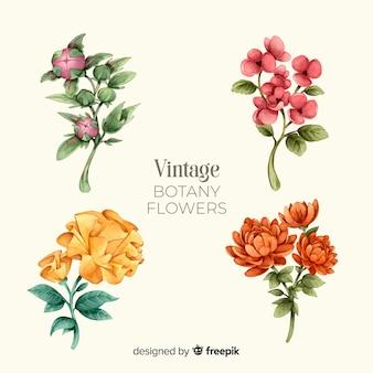Collection de fleurs botaniques vintage