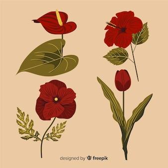 Collection de fleurs et feuilles botaniques