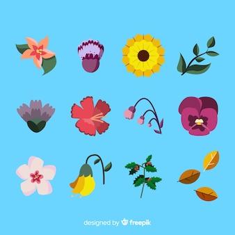 Collection de fleurs et feuilles dessinées à la main
