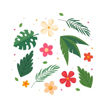 Collection de fleurs et de feuilles d'été.