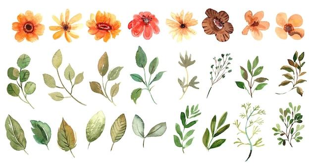 Collection de fleurs et de feuilles jaunes aquarelle