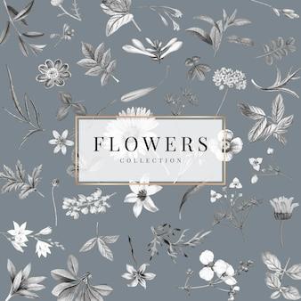 Collection de fleurs sur fond gris