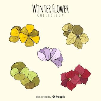 Collection de fleurs d'hiver dessinés à la main
