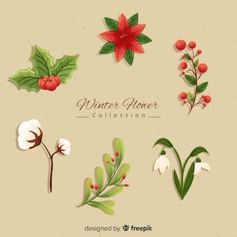 Collection de fleurs d'hiver