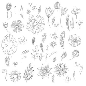 Collection de fleurs et plantes dessinées à la main, croquis, style doodle.