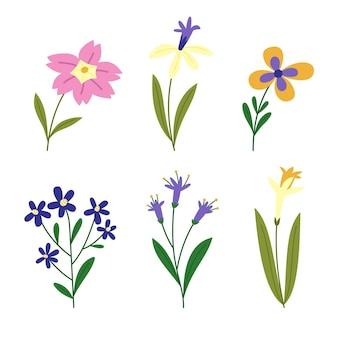 Collection de fleurs printanières plates
