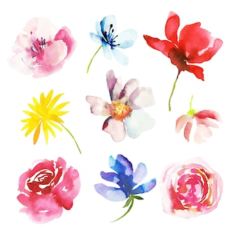 Collection de fleurs de printemps aquarelle