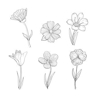 Collection de fleurs de printemps dessinées à la main