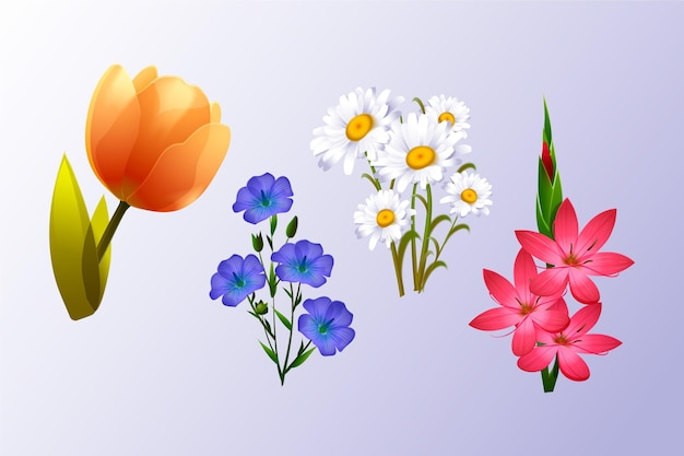 Collection de fleurs de printemps réaliste