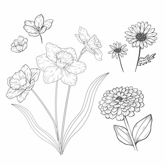 Collection de fleurs de printemps vintage