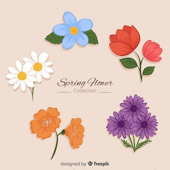 Collection de fleurs de printemps