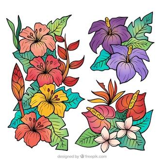 Collection de fleurs tropicales dessinés à la main belle