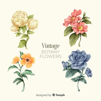 Collection de fleurs vintage
