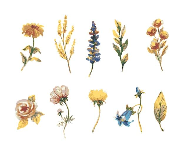 Collection florale colorée avec des feuilles et des fleurs, dessin aquarelle.